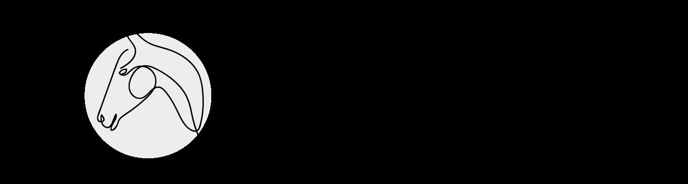Fohlenaufzucht Schlipf